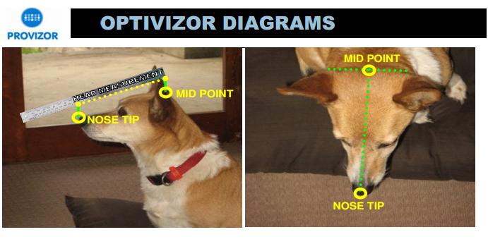 optivisor diagram